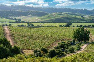 Godetevi le montagne di Santiago fino alla Valle di Casablanca