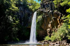 Parco Nazionale del Conguillio 307 km